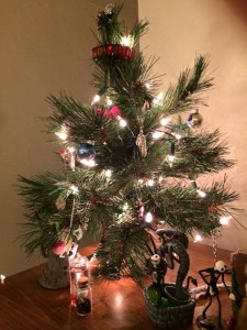 We put up a tiny, tiny fake tree and put ridiculous ornaments on it.