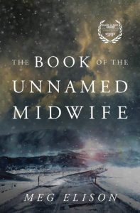 Cover art for The Book of the Unnamed Midwife