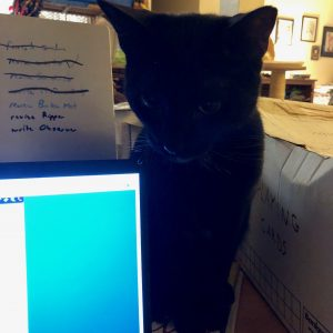 Black cat behind a laptop monitor.